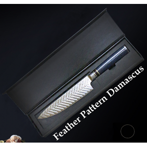 67 Layers FEATHER Pattern Damascus Kitchen Chef Knife With Resin Handle